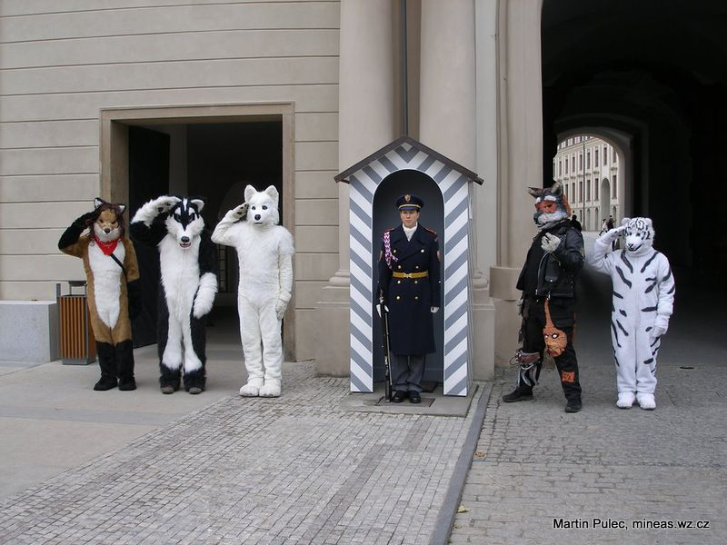 Soubor:Furries and Guardwoman.jpg